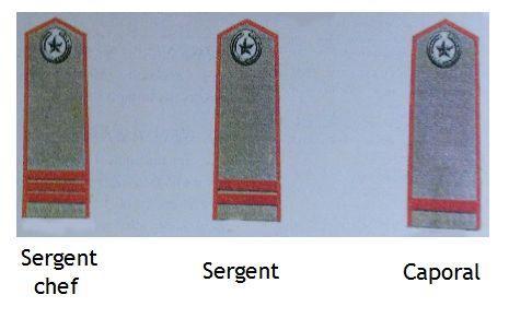 grade-sous-officiers-de-compagnie-anv.jpg