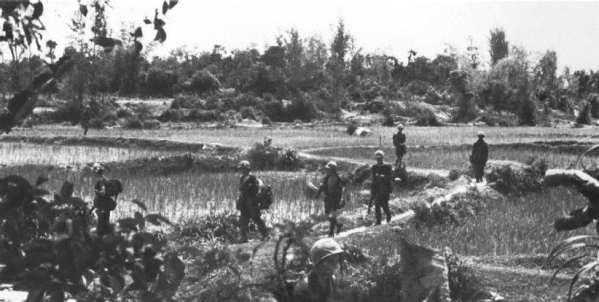 Operation swift rice paddies crossed by 3rd 5th marines on 7 september