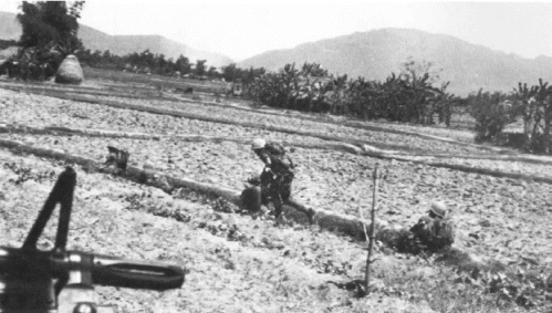 Union ii marines from 3rd 5th in low rice paddy dikes